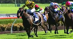 Um Dos Momentos Mais Embaraçosos Para Um Jockey Numa Corrida De Cavalos http://www.desconcertante.com/um-dos-momentos-mais-embaracosos-para-um-jockey-numa-corrida-de-cavalos/