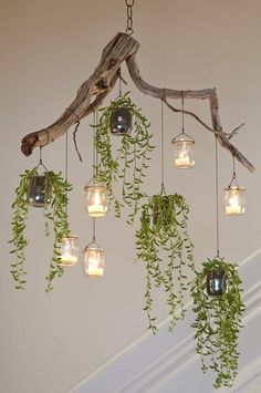 indoor hanging plants ideas to decorate your home 4 ~ mantulgan.me indoor hanging plants ideas to decorate your home 4 ~ mantulgan. Driftwood Chandelier, Diy Chandelier, How To Make Chandelier, Christmas Chandelier, Modern Chandelier, Outdoor Chandelier, Decorative Chandelier, Driftwood Mobile, Handmade Chandelier