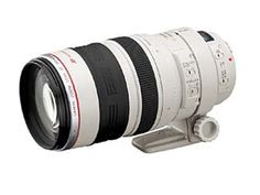 Canon EF 100-400mm f4.5-5.6L IS USM Telephoto Zoom Lens for Canon SLR Cameras $1589.00