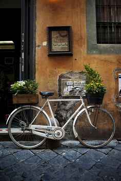 Two wheeled florist, Rome, Italy