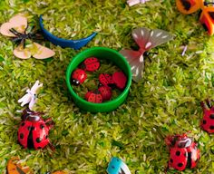 Green rice and white rice, ladybug buttons and figures, dragonfly buttons, butterflies, and silicon pinch bowls