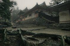 https://flic.kr/p/r1eNzh | Rainy Day in Nara | A rainy February morning at Tamukeyama Hachimangu shrine in Nara, Japan. 雨の2月の朝. 手向山八幡宮, 奈良.