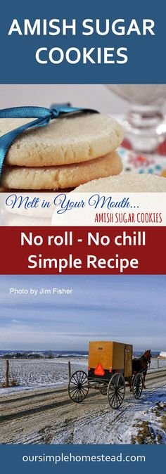 Melt in Your Mouth Amish Sugar Cookies Simple Amish Sugar Cookies There aren't many sugar cookies I say don't need frosting but these are an exception to that rule. These super simple no roll, no chill Amish Sugar Cookies are perfect for any occasion. Cookie Desserts, Cookie Bars, Just Desserts, Cookie Recipes, Dessert Recipes, Delicious Desserts, Amish Sugar Cookies, Sugar Cookies Recipe, Cake Cookies