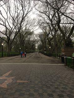 Sidewalk, Country Roads, New York, New York City, Side Walkway, Walkway, Nyc, Walkways, Pavement