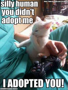 I adopted you!