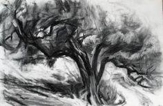 "Saatchi Art Artist Neil Bolton; Drawing, ""Olive Tree"" #art"