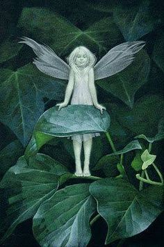 for the faeries ❧