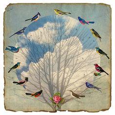 ruffle my feathers - fiona watson Collages, Mixed Media Collage, Collage Art, Bird Identification, Bird Feathers, Ruffled Feathers, Bird Art, Printmaking, Street Art