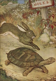 The Tortoise and the Hare Slow and steady wins the race...............