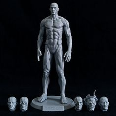 1:8 scale (9 inches) Planar / Muscular Figure with 3 or 6 Heads.3 Heads includes the Planar Skull, Planar Head and Realistic Head.6 Heads includes all of the above and the Split Planar, Evil Orc and Asian Synthetic Head.Sculpture by David RichardsonPlease subscribe on our Newsletter page to be notified for this release. Available by September.No returns accepted.