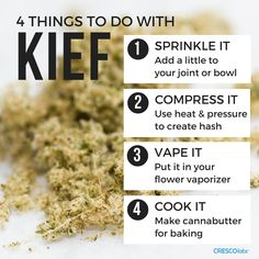 What the heck are you supposed to do with kief anyway? Cannabis Growing, Cannabis Plant, Cannabis Oil, Marijuana Facts, Marijuana Recipes, Medical Cannabis, Medicinal Herbs, Ganja
