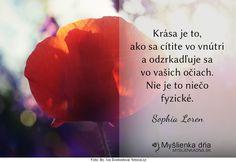 Krása je to, ako sa cítite vo vnútri a odzrkadľuje sa vo vašich očiach. Nie je to niečo fyzické.Sophia Loren