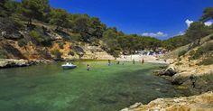 SKJULT. Gør som de lokale og find vej til Cala Falcó på Mallorca, som ligger godt gemt i en pinjeskov. - Foto: Michael Fjording