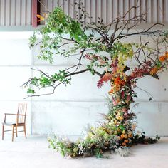From a year ago on my foam free large installation class at Seeing the trees outside starting to show their fall colours gave me a little frisson of excitement yesterday. Oh how I love autumn Flower Installation, Floral Backdrop, Ceremony Backdrop, Wedding Ceremony, Wedding Backdrops, Ceremony Decorations, Flower Garlands, Flower Tree, Hanging Flowers