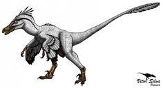 Velociraptor-Vitor-Silva-600x326.jpg (600×326)