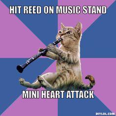 Clarinet Cat, amirite?