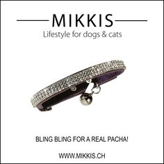 Passion for bling bling ... www.mikkis.ch
