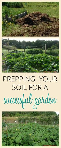 In order to have a successful garden, you need to make sure you have good and healthy soil. Follow these simple tips to improve your foundation. via @SLcountrygal