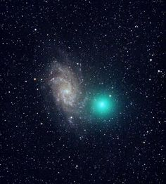 Comet Tuttle