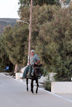 Amorgos. Tranquillement à dos d'âne. Paros, Catamaran, Bradley Mountain, Greek, Travel To Greece, Santorini, Greek Language, Greece, Catamaran Yachts