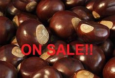Wild Crafted Buckeyes  NOW on SALE only 0.85 cents by FuzzyLittleLambs on Etsy
