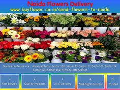 Noida online florist is the India's best online florist in World. I think Noida online florist Provides you better Services in all occasions. You can send flowers to Noida to your lover and relatives. Near By Areas Name Are Amarpali Zodic, Sector 120, Sector 93, Sector 12, Sector 63, Sector 14, Sector 125, Sector 150, Filmcity, Atta Market