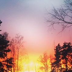 Sunset with bright colours #winter #visitkouvola #trees #ourfinland #sunset