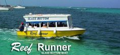 Reef Runner Glass Bottom Boat has been in operation for over 15 years. Aboard the Reef Runner Glass Bottom Boat, and go on a sightseeing and snorkeling tour along the the second longest Barrier Reef in the world! Book a tour now on projectexpedition! #CreateYourAdventure #GlassBottomTours #GlassBottomBoats