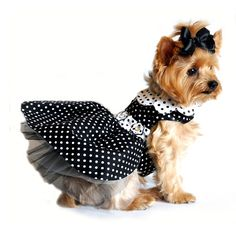 Polka Dot Dog Dress - Black and White