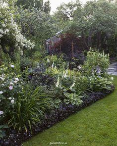 Revsuga som kantväxt – www. Back Gardens, Small Gardens, Outdoor Gardens, Modern Gardens, Garden Planters, Succulents Garden, Planting Flowers, Garden Container, Garden Benches