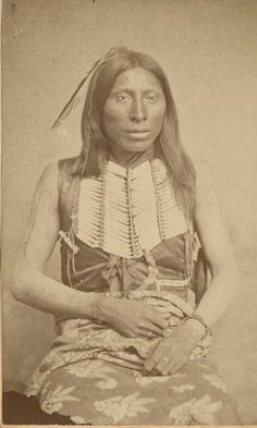 Native American History, Native American Indians, West Indian, Betrayal, Wild West, Respect, Nativity, North America, Turtle