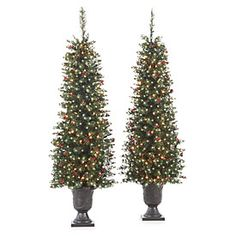 4.5' Pre-Lit Artificial Evergreen Urn Trees with Clear Lights & Berries, 2-Pack at Big Lots.