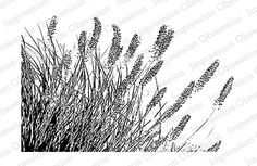 Impression Obsession - Cling Mounted Rubber Stamp - By Tara Caldwell - Wispy Grass,$9.99
