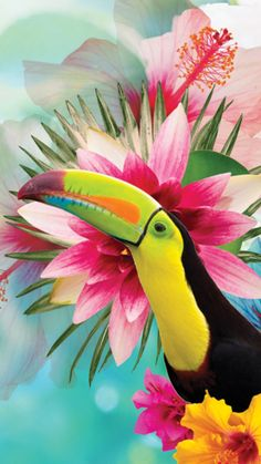 Beautiful new collage piece from Lara Skinner. See more of her work at her online portfolio. Tropical Animals, Colorful Animals, Tropical Art, Tropical Birds, Tropical Paradise, Animal Wallpaper, Wallpaper Backgrounds, Wallpapers, Beautiful Birds