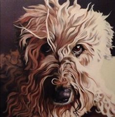 "dog hairs  30""x30  oil commission  #dogpainting #dogart #dogportrait #petportrait #seattleartist #oilpainting"