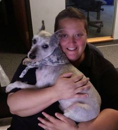 Candace KochoskyCT Lost Pets 2 hrs  ·   Birge Pond area of Bristol - 06010. Miniature Schnauzer, recently groomed. No collar, tags, not neutered. Is chipped by breeder, but not registered. 860-329-9539 grey https://www.facebook.com/CT.Lost.Pets/posts/866028710185672