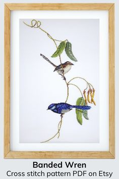 Cross stitch pattern of two Banded Wrens. Also known as Splendid Wrens. A large embroidery pattern for a stitcher with beginner skills or a crafter looking to start something new. Cross Stitch Bird, Modern Cross Stitch, Counted Cross Stitch Patterns, Wrens, Bird Embroidery, Australian Birds, Bird Patterns, Vintage Artwork, Crossstitch