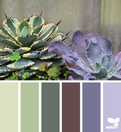 { succulent hues } image via: @swgardens color guide great for choosing inks and paper colors