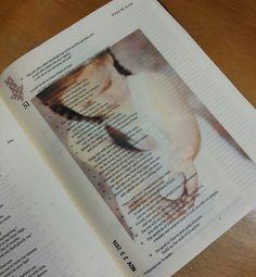 Bible art journaling - by Lynda Neal.