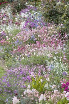 english cottage garden borders