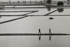 GIANNI BERENGO GARDIN Milano, 1970