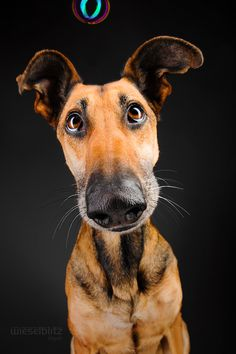 Noodles and bubbles by Elke Vogelsang on 500px