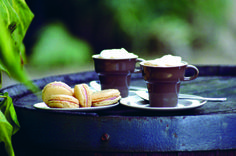 Wild Sloe Gin Macaroons from 'Wild Food' by Biddy White Lennon & Evan Doyle http://www.obrien.ie/wild-food