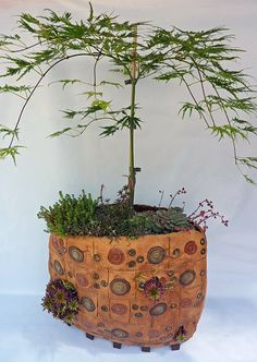 Bodenvase Keramik - winterfest, bepflanzt