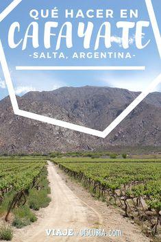 Todo lo que hay para hacer en Cafayate, la tierra de los vinos en Salta, Argentina. #Cafayate #Salta #Argentina #NOA #norte Ideas Para Fiestas, Koh Tao, Travel Packing, Places To Visit, Country Roads, Wanderlust, Success, Traveling, Buenos Aires