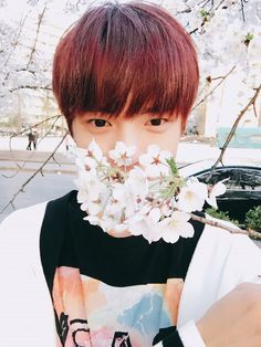 Minhyuk with cherry blossom *_*