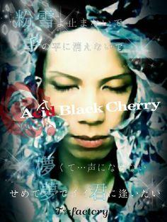 Acid Black Cherry 冬の幻 そろそろこの季節がやってくるねー✩