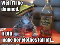 Tequila Makes Her Clothes Fall Off.