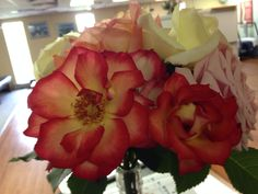 Ombré red-yellow roses Red And Yellow Roses, Red Ombre, Girly, Flowers, Plants, Beautiful, Women's, Girly Girl, Plant