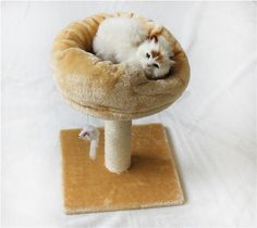 Vedem Cat Kitten Pet Play Tree Post Scratcher Furniture House Bed Scratching Board Condo ** You can get additional details at the image link. (This is an affiliate link and I receive a commission for the sales)